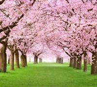 March market update – investors will enter spring in better spirits